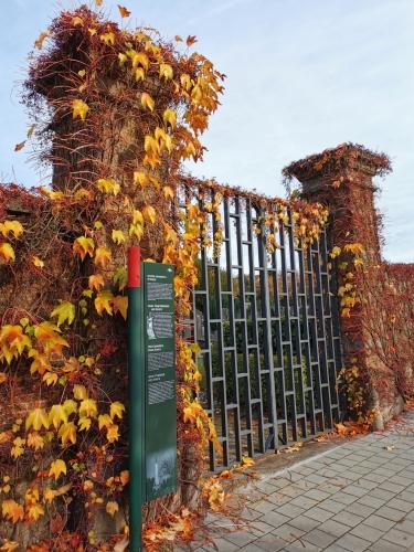 Evere ancien cimetière (1).jpg