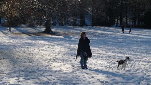 pard josaphat,hiver,neige,soleil,promenade