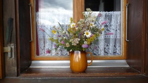Fleurs d'été 2011 (4).jpg