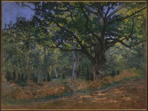 Monet Le chêne de Bodmer, Fontainebleau (MET).jpg