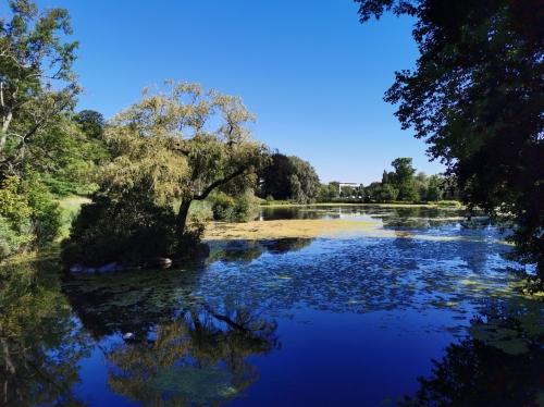Parc de Woluwe (15).jpg