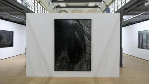 balthasar burkhard,photographies,1969-2009,exposition,le botanique,bruxelles,noir et blanc,paysage,animaux,corps,nus,villes,culture