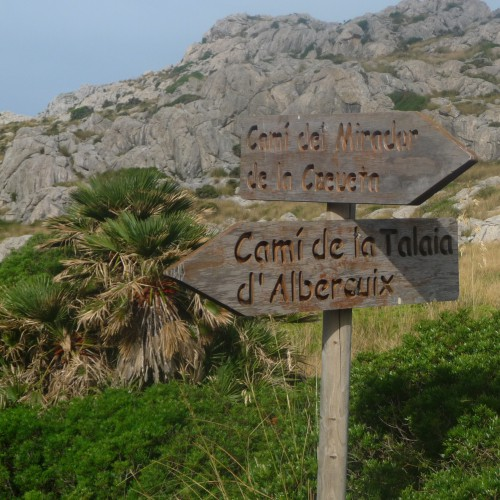 le breton,marcher,éloge des chemins et de la lenteur,marche,marcheurs,flâneurs,philosophie,culture