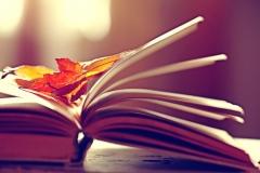 carré,isabelle,les rêveurs,roman,littérature française,autobiographie,enfance,famille,vie,culture
