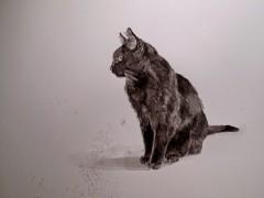 hans op de beeck,the drawing room,exposition,aquarelle,noir et blanc,bruxelles,botanique,nuit,nature,paix,culture