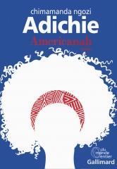 Adichie Americanah.jpg