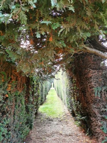 Evere ancien cimetière (5).jpg