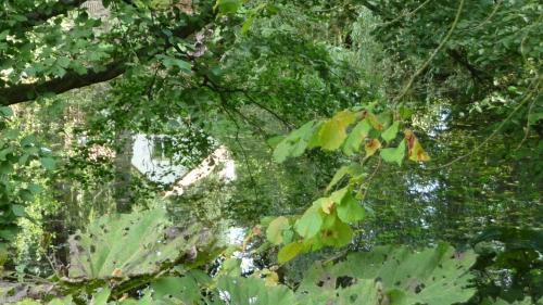 parc,tournay-solvay,watermael-boitsfort,promenade,château,potager,verger,roseraie,villa blanche,sculpture,jardin,culture,patrimoine