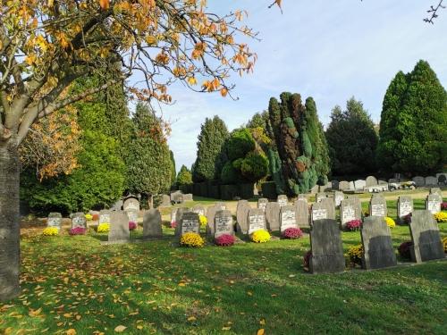 novembre,soleil,rouge cloître,héron,ancien cimetière d'evere,parc josaphat,automne