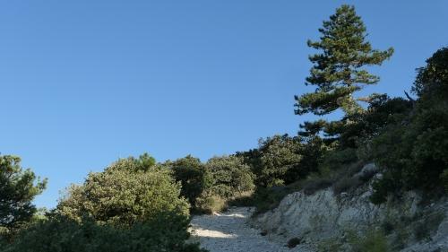 provence,drôme provençale,balades,chats,orange,nature,culture