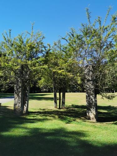 Parc de Woluwe (17).jpg