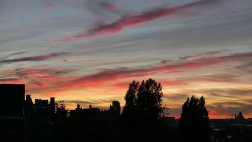 lumière,automne,ciel,photo,vue,bruxelles