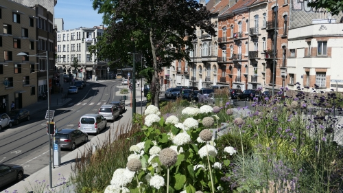 L'été dans la rue (4).JPG