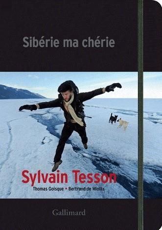 tesson,dans les forêts de sibérie,journal,2010,lac baïkal,ermite,solitude,russie,culture