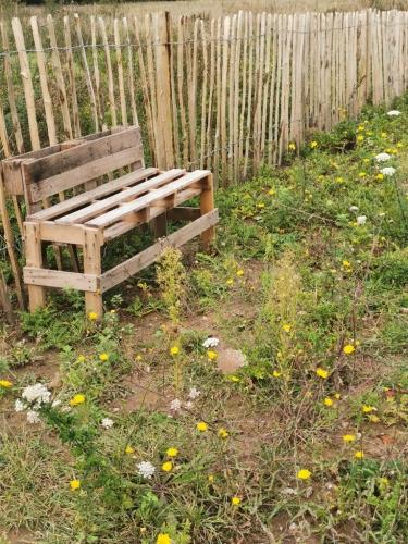 friche josaphat,l'été à josaphat,les nouveaux disparus,biodiversité,aménagement urbain,nature,habitat,protection de l'environnement,schaerbeek,région bruxelloise