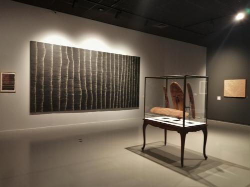 aboriginalités,exposition,musées royaux des beaux-arts,bruxelles,art aborigène,collection philippson,peinture,objets,spiritualité,culture