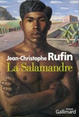 rufin,jean-christophe,la salamandre,roman,littérature française,brésil,sexe,passion,culture