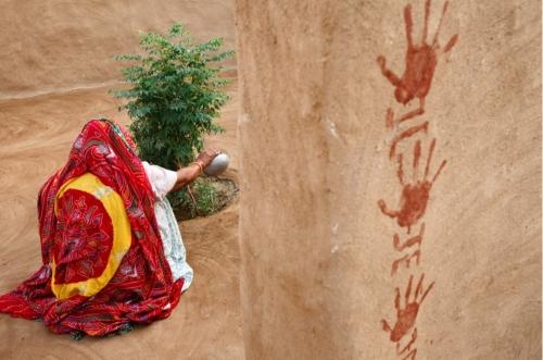 irène frain,la forêt des 29,récit,histoire,inde,désert,eau,arbres,initiation,vingt-neuf,bishnoïs,mode de vie,écologie,culture