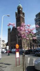 Square Riga en fleurs (6).JPG