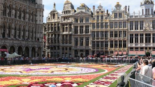 grand-place,bruxelles,tapis de fleurs,2018,tourisme,maisons de la grand-place,restauration,vie bruxelloise,culture