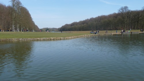 tervuren,parc,étangs,arbres,promenade,printemps,forêt de soignes,culture