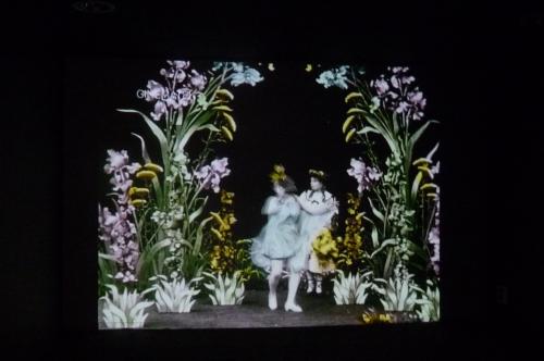 flora's feast,motif floral,art nouveau,fleurs,architecture,arts décoratifs,fondation civa,exposition,ixelles,bruxelles,culture,photographie,matthieu litt