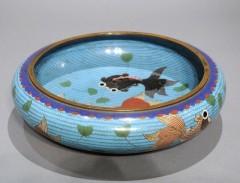 Coupe chinoise aquarium.jpg