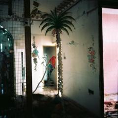 anna puig rosado,exposition,venterol,le temple,rue du bout du monde,photographie,désorienté,pays lointains,regard,humain,culture