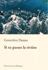 damas,si tu passes la rivière,roman,littérature française,belgique,roman d'apprentissage,monologue,culture