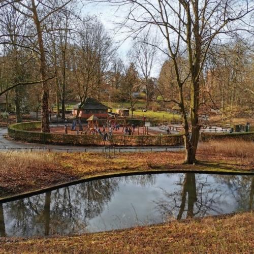parc josaphat,schaerbeek,février,promenade,mousse,vert,animaux,nature