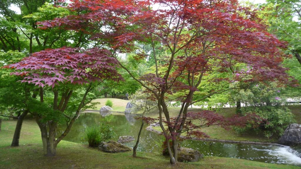 Jardin Japonais Textes Pretextes