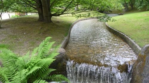 jardin japonais,hasselt,promenade,art,jardin,japon,paysage,arbres,eau,koï,culture