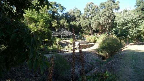 rayol,jardins,méditerranée,conservatoire du littoral,france,côte d'azur,culture