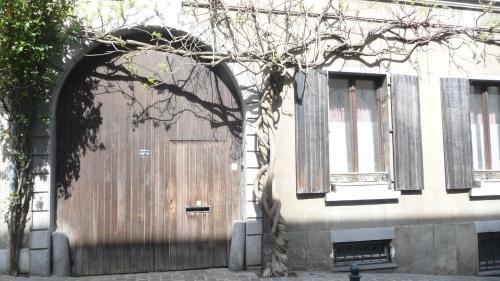bruxelles,ixelles,arbres,ville,village,culture