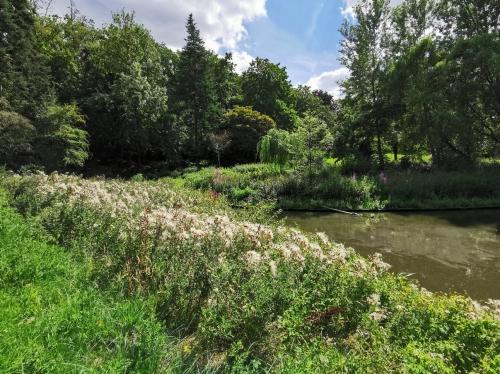 balade,schaerbeek,parc josaphat,nature,été