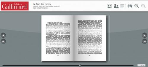 sallenave,le don des morts,essai,sur la littérature,littérature française,livres,vie,société,lecture,culture