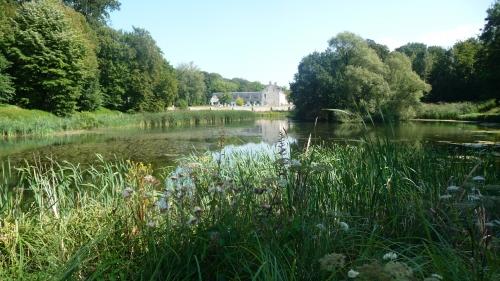 rouge-cloître,auderghem,bruxelles,abbaye,étangs,nature,forêt de soignes,promenade,culture