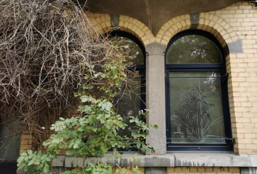 fenêtres,ferronnerie,fleurs,feuillages,ville,culture