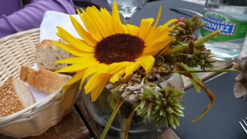 Fleurs d'été 2011 (6).jpg
