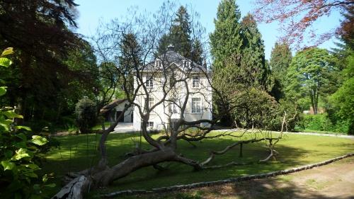 balade,arbres,jardins,bruxelles,printemps,mai,culture