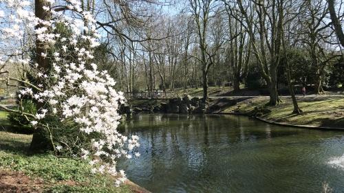 parc josaphat,schaerbeek,promenade,magnolias,printemps
